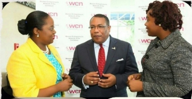 Meeting then President of the Women's Entrepreneur Network and Minister Anthony Hylton